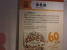 blog_import_5ac59c96dbde1-3530307